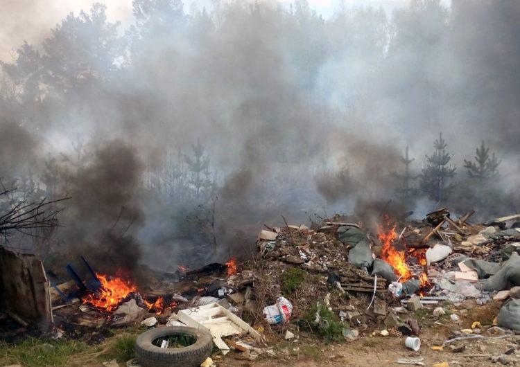 Экологи Подмосковья потребовали закрыть мусорку в городе Видное