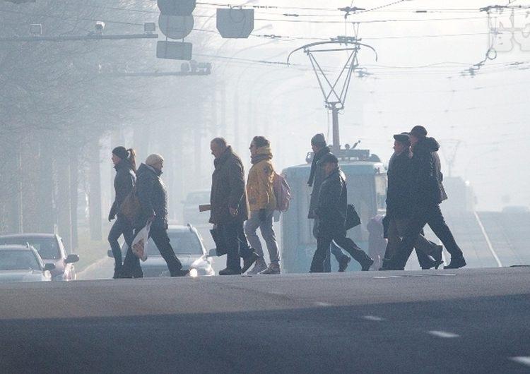 Запах гари распространяется по всей Москве