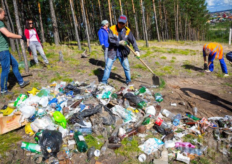 В Подмосковье продолжают бороться с незаконными мусорными свалками