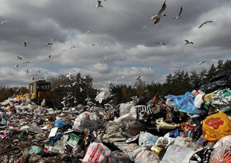 Ввозить мусор на полигоны Подмосковья будут по электронным талонам