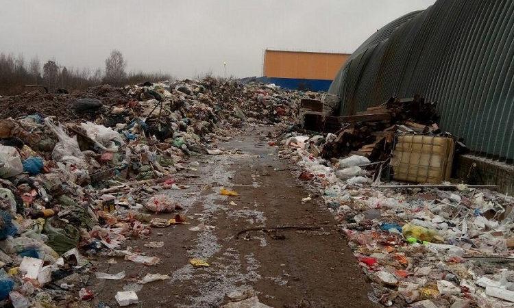 Ущерб от нелегальной свалки в Воскресенске составил практически сто миллионов рублей
