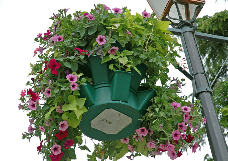 Подвесные вазы с цветами улучшат настроение москвичей