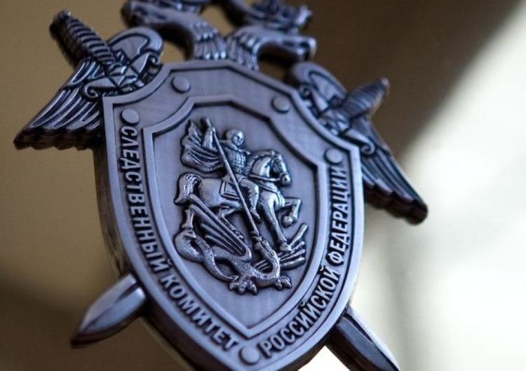 Следствие проверяет информацию о нападениях на прохожих в Москве