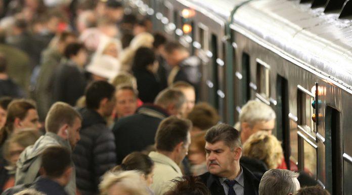 Упавший под поезд метро на станции «Тверская» мужчина остался жив
