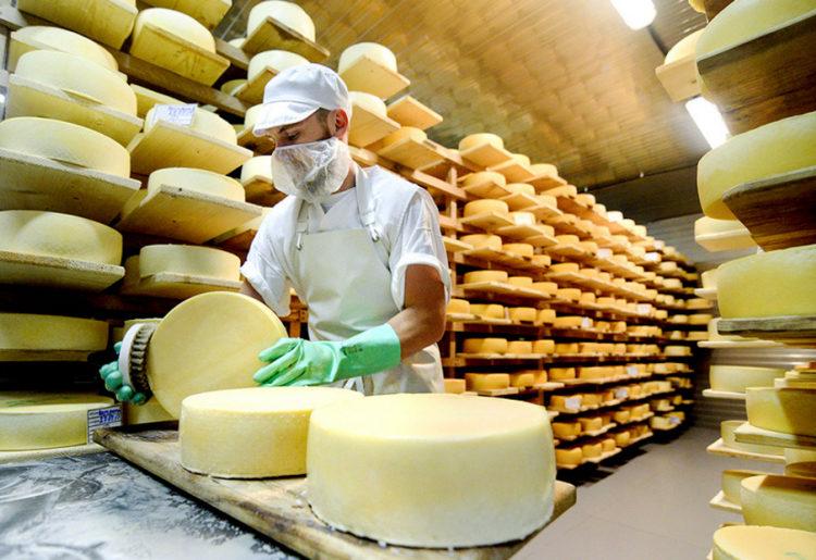 В Подмосковье на молочном форуме обсудят проблему затоваривания рынка сыром