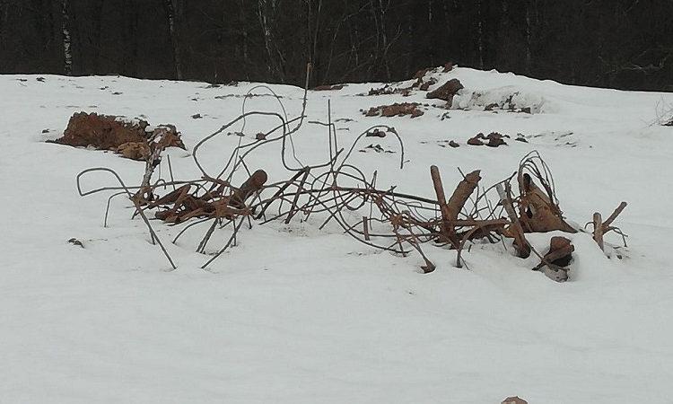 Нелегальная свалка обнаружена на кладбище в Красногорске