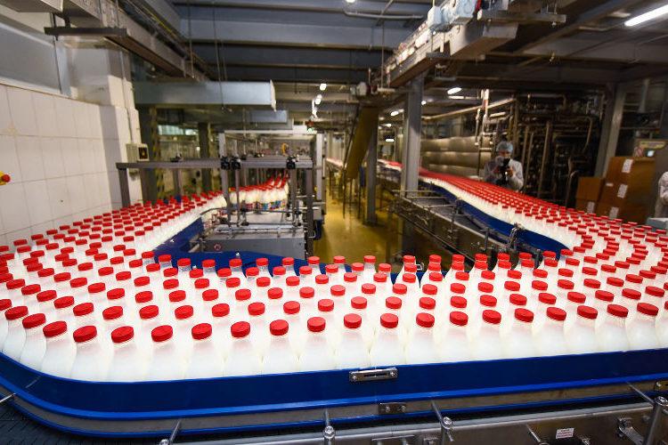 Подмосковное молоко будут отправлять в Китай ещё три предприятия
