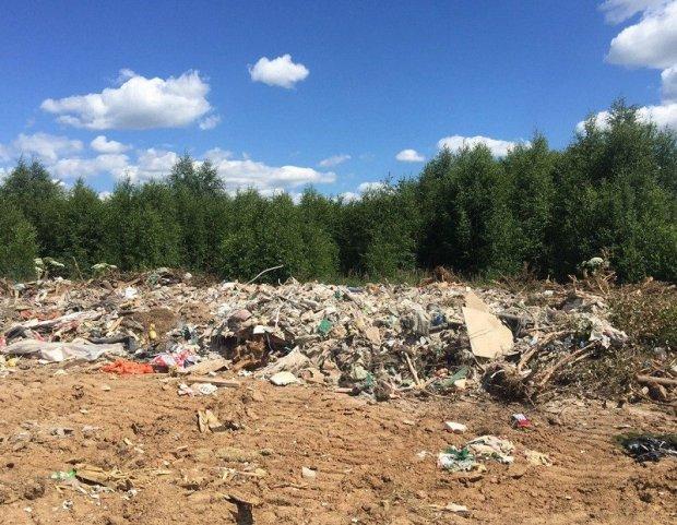 В Подмосковье пресекли незаконное складирование отходов