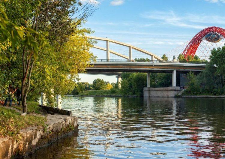 Берега московских водоёмов расчистят в День эколога