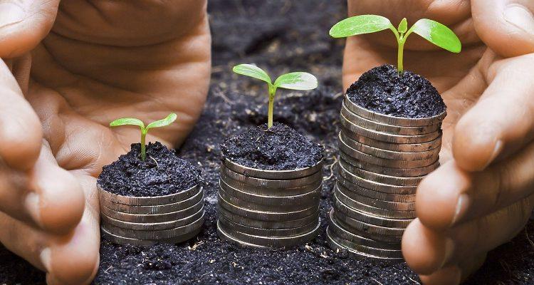 Экологически ответственный бизнес может получить льготы в Москве