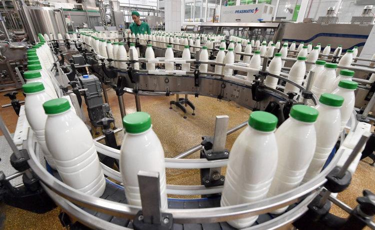 В Московской области запланировали открыть 14 молочных производств