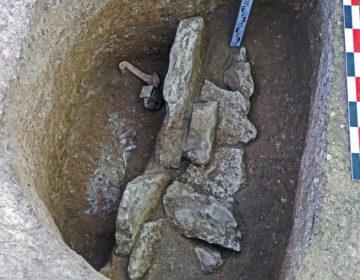 В Подмосковье обнаружили памятники каменного века возрастом 10 тыс. лет
