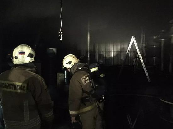 В Подмосковье задержали владельца сгоревшего хосписа