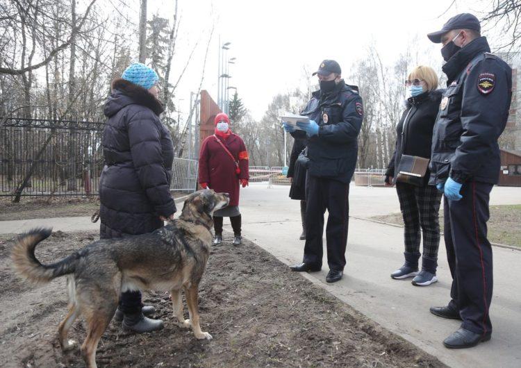 В Подмосковье установят штраф за выгул собак без поводка и намордника